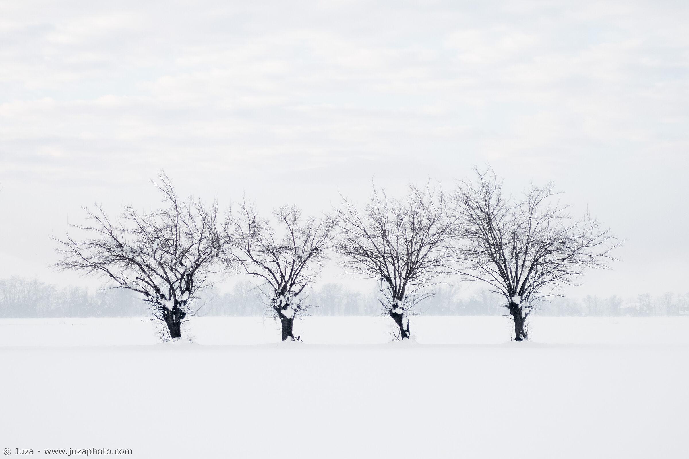 Nella neve...