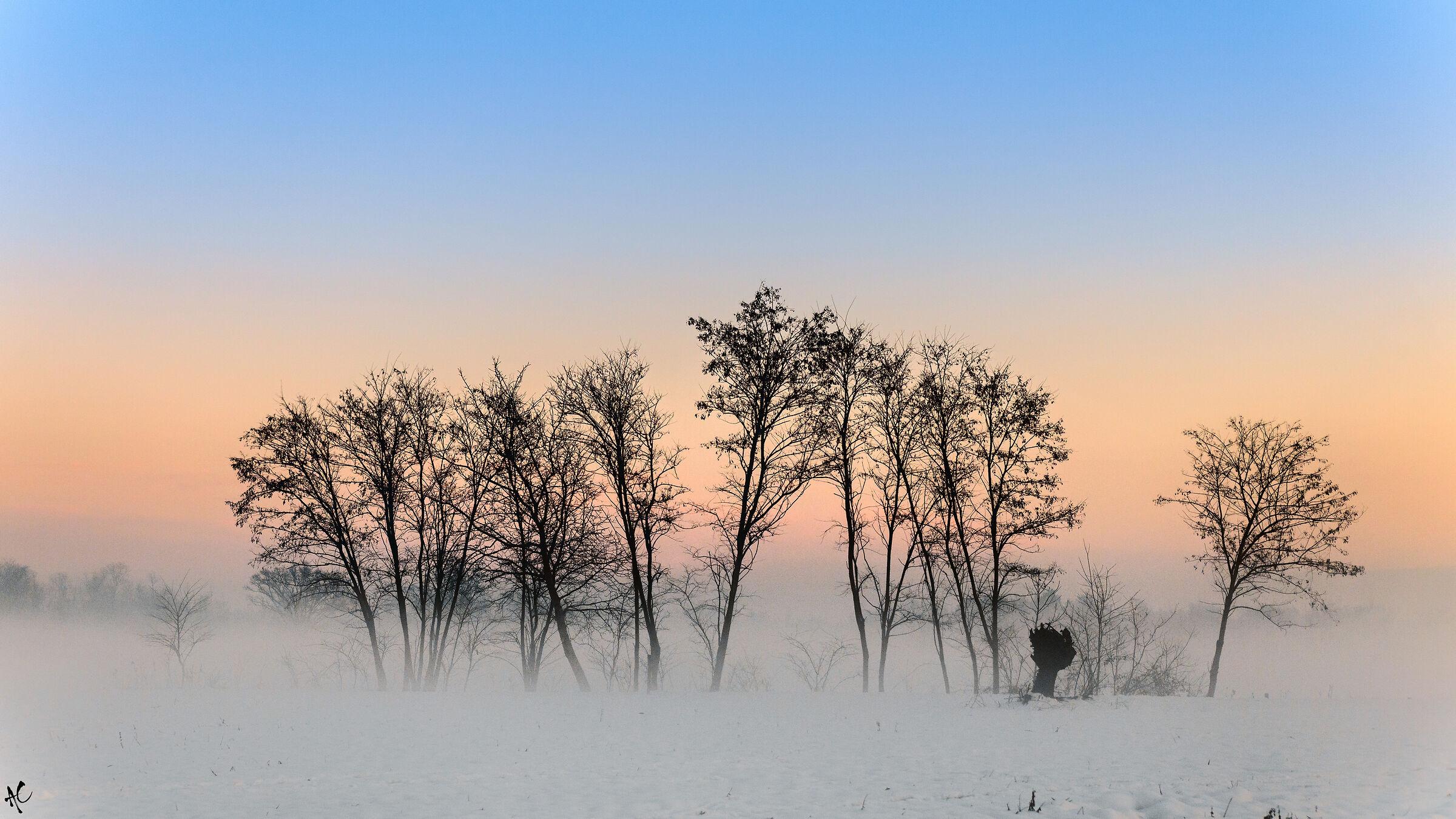 L'ultimo tramonto dell'anno...