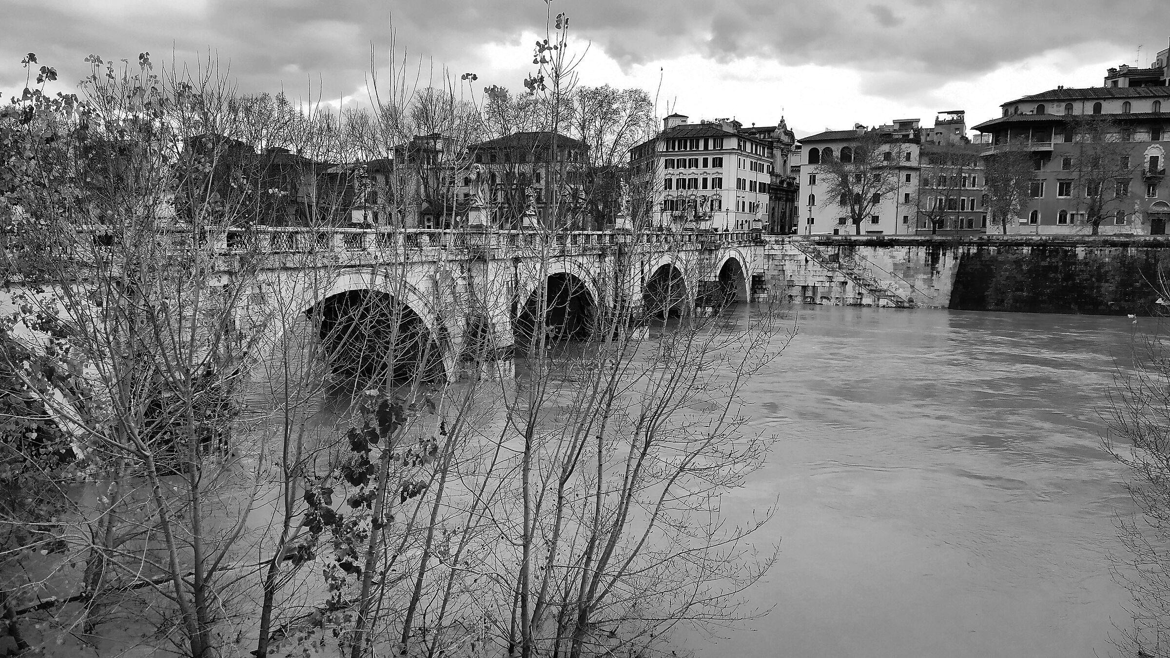 Fiume Tevere difronte Castel Sant'Angelo (Roma)...