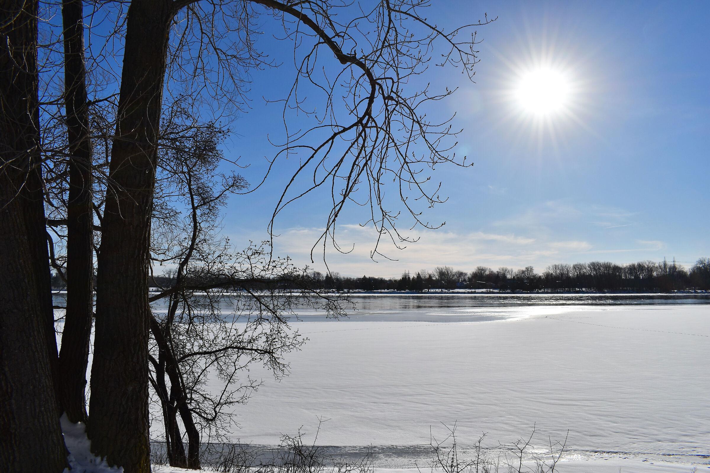 Winter land on the Rivière des Prairies...