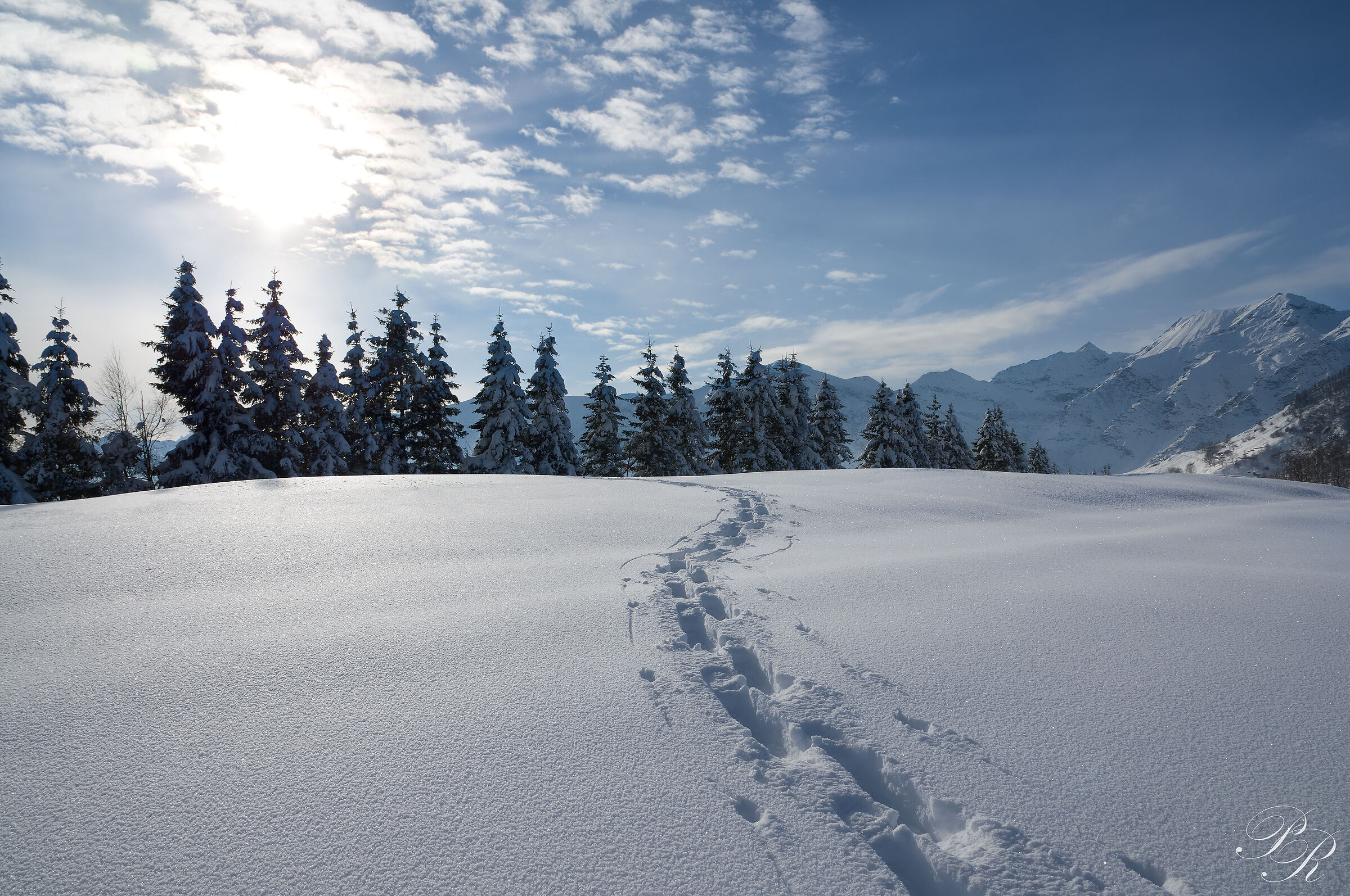 And I turned to look at my footsteps...