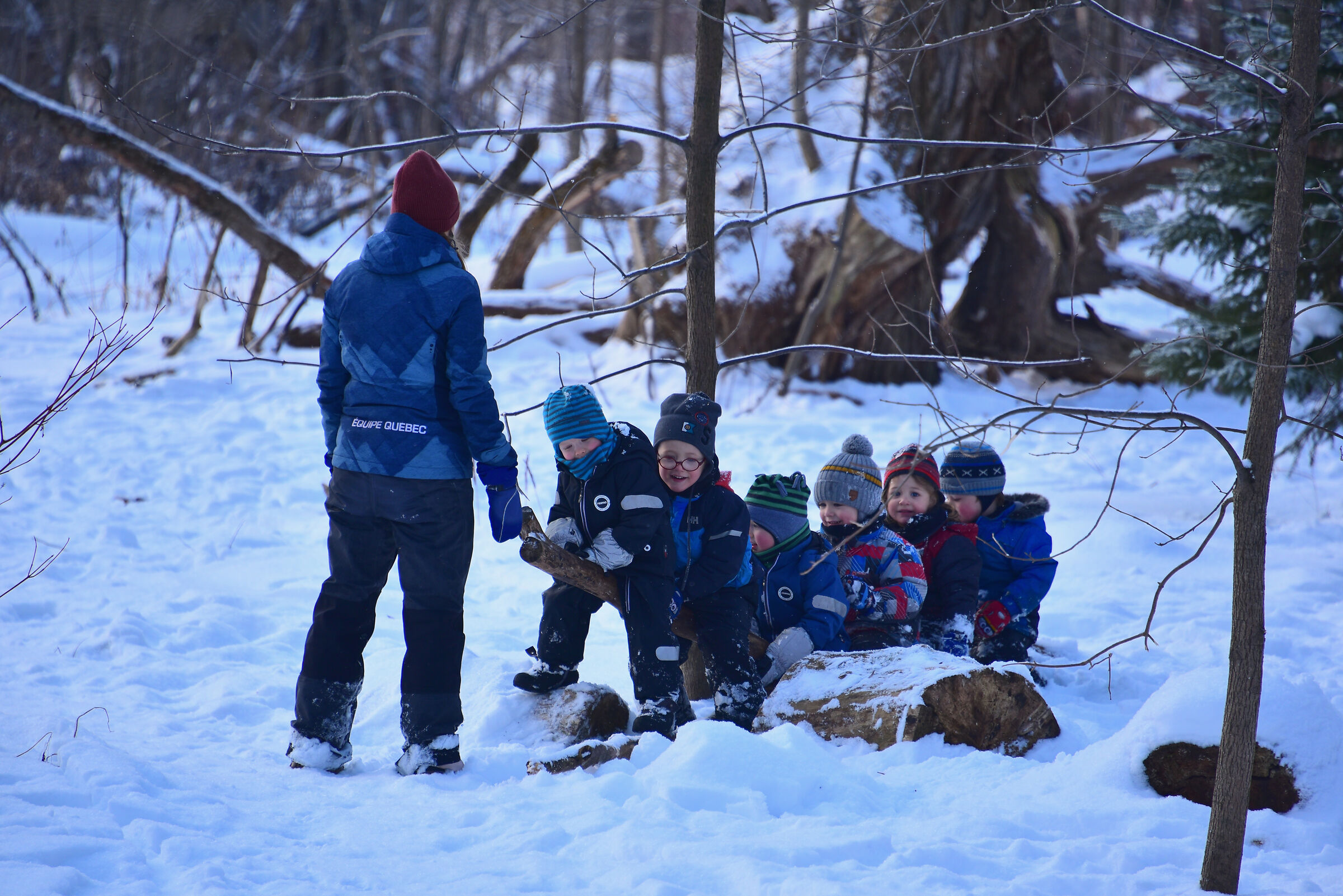 How children have fun in the woods of a park Quebec...