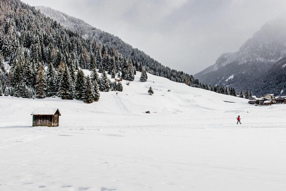 Snow trekking...