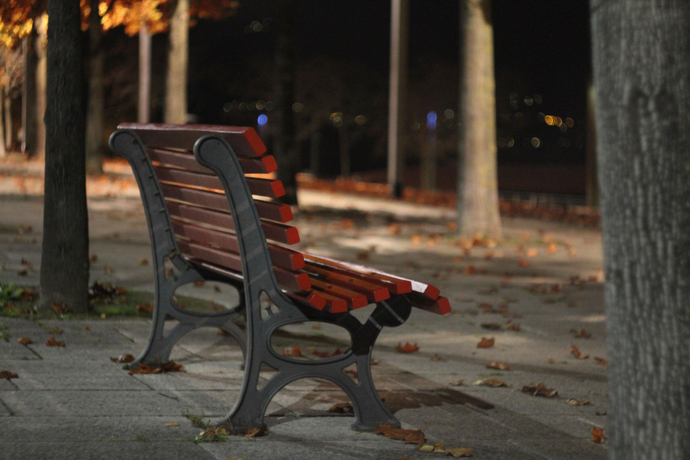 Romantic bench.....