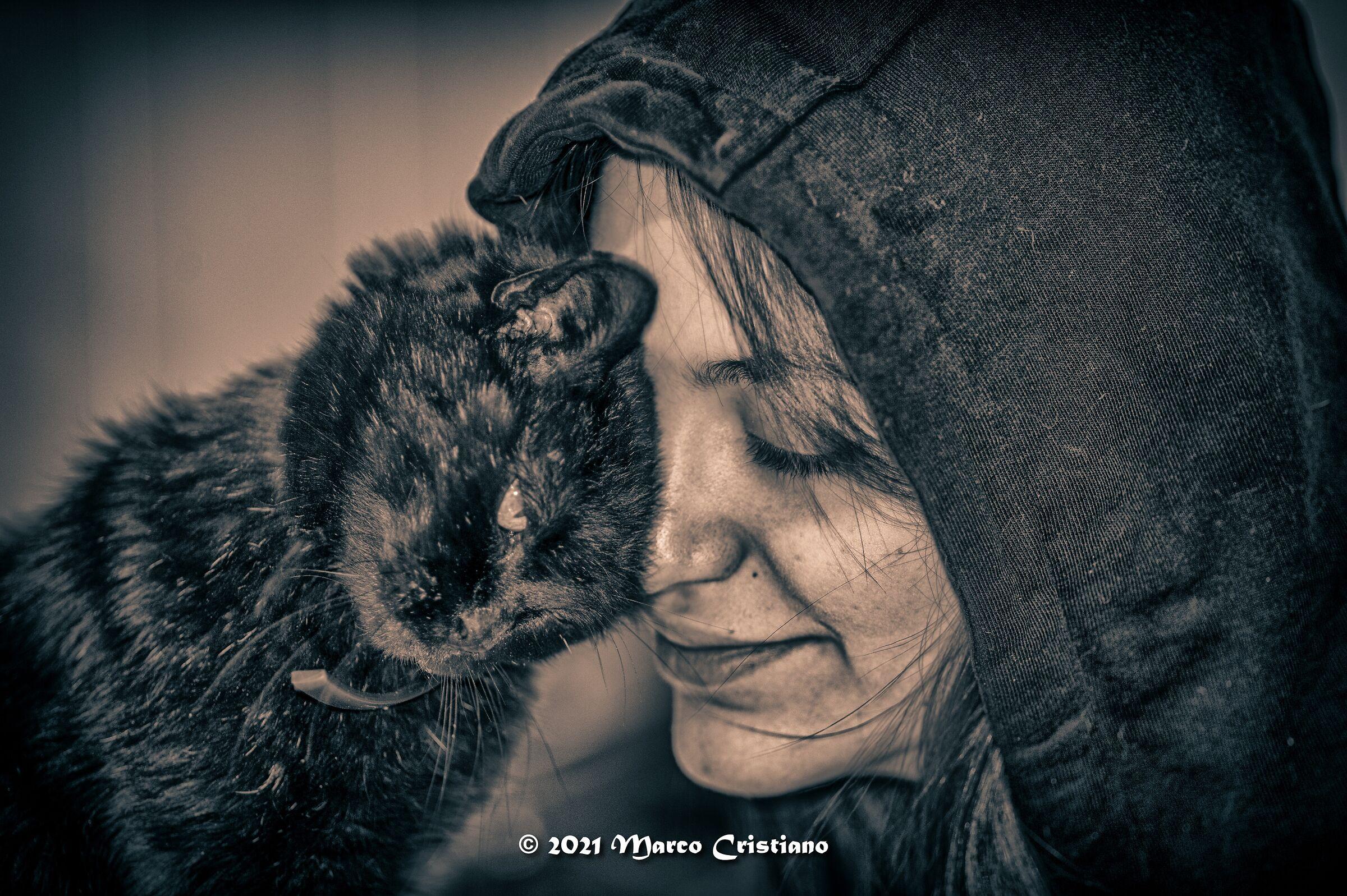 Le due gatte di casa.....