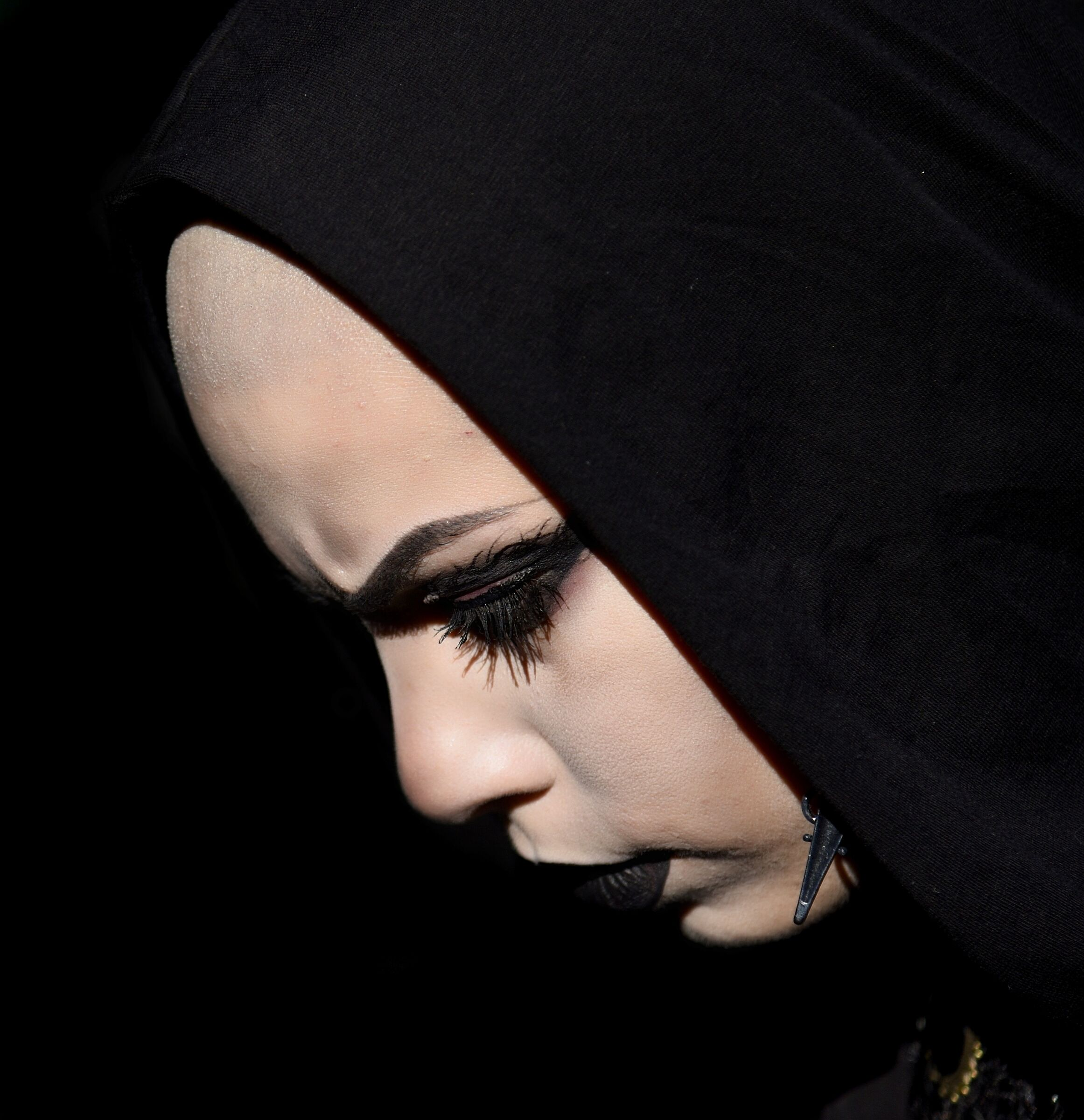 The Dark Lady ...