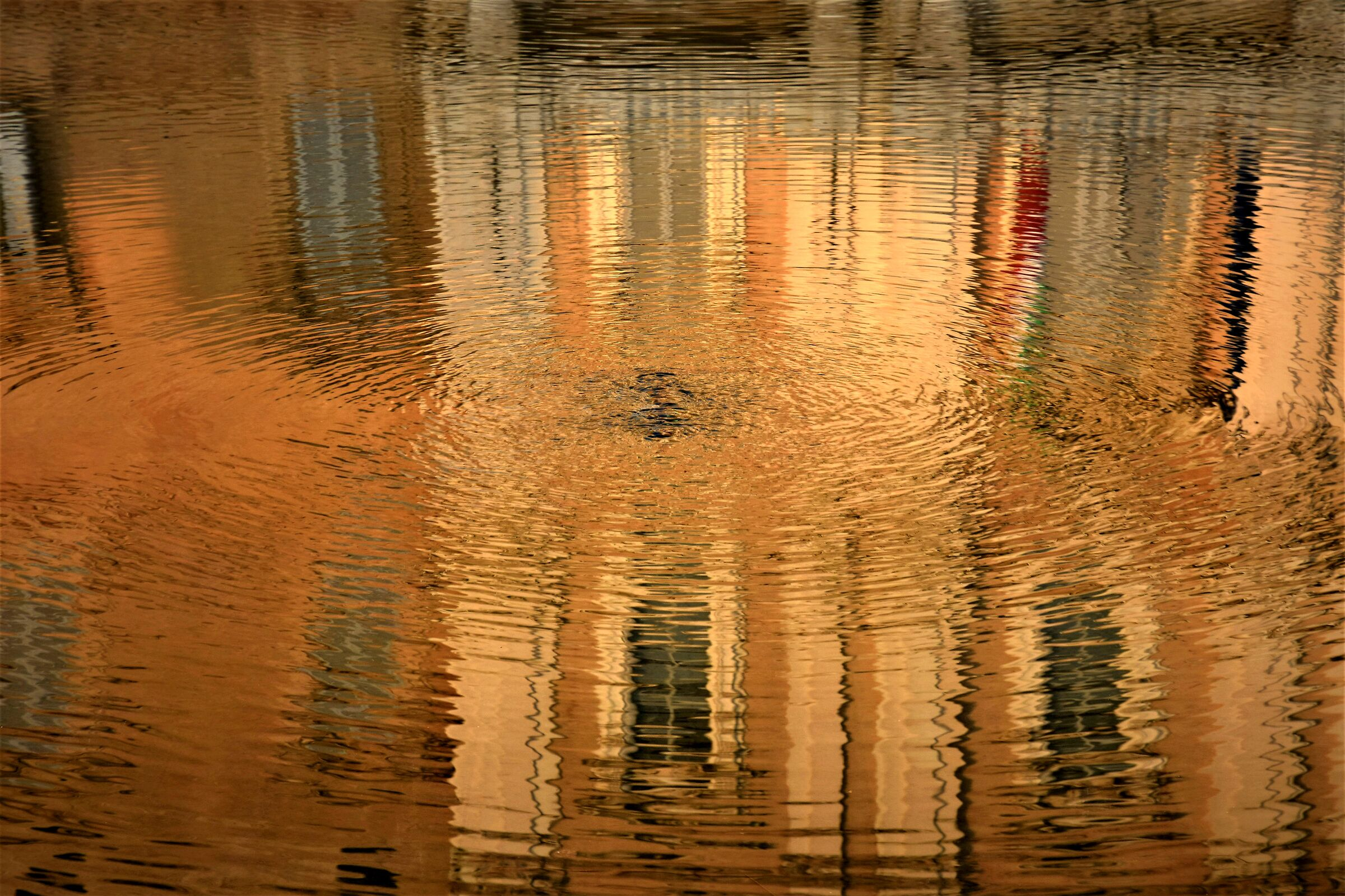 a reflection.. Ducale...