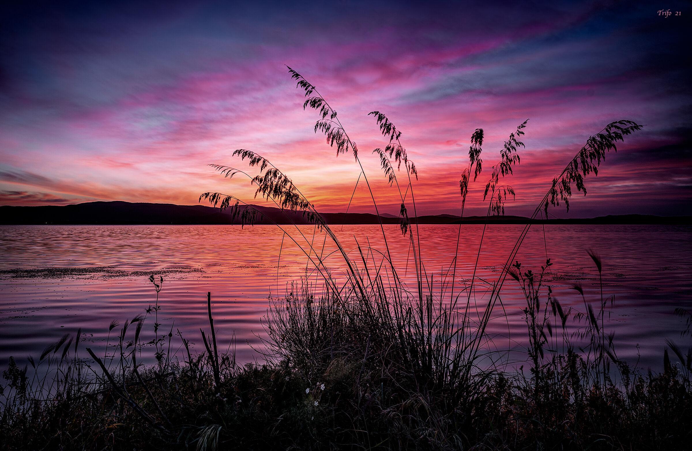 At dawn .........