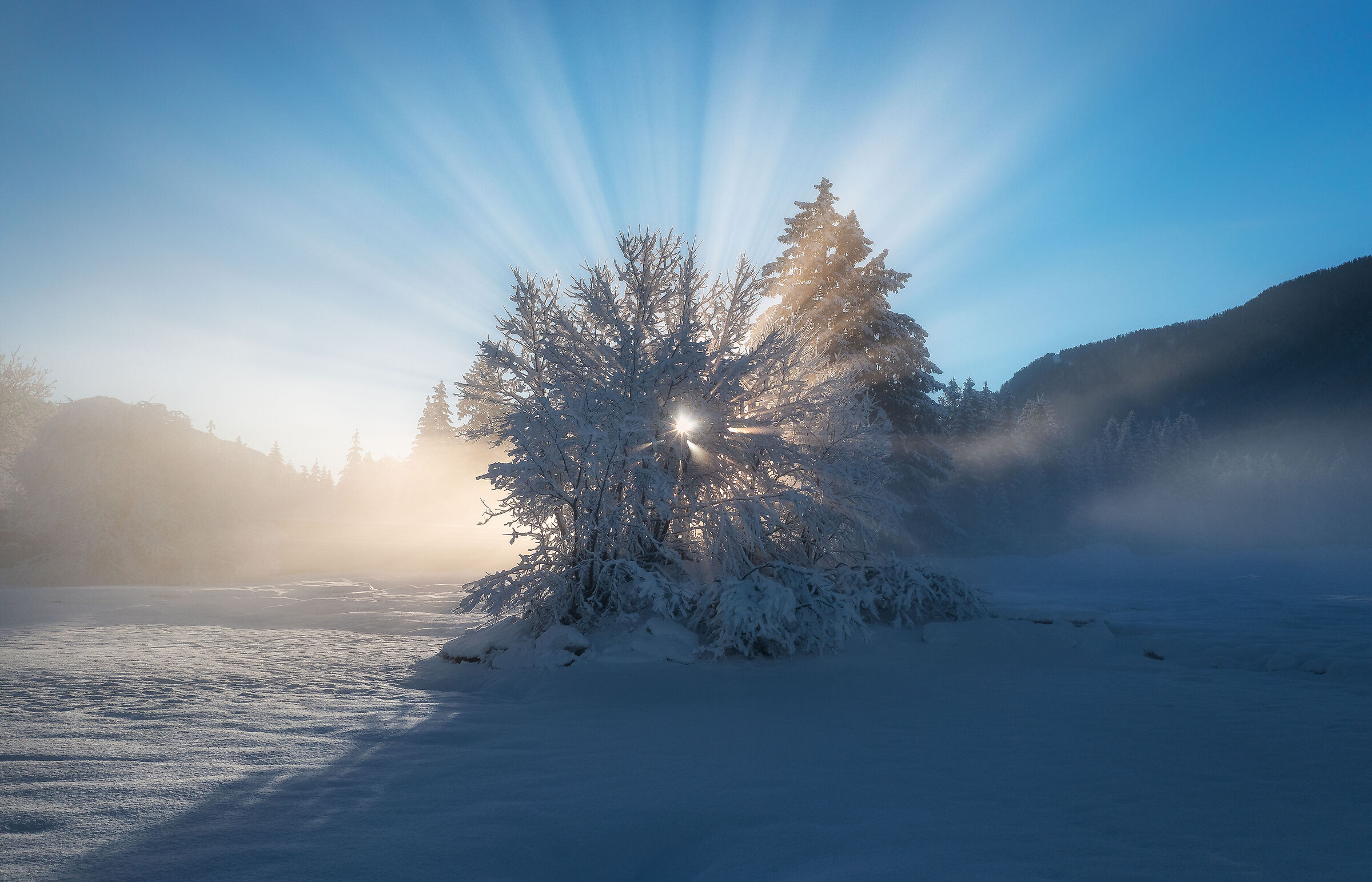 Frozen fairytale...