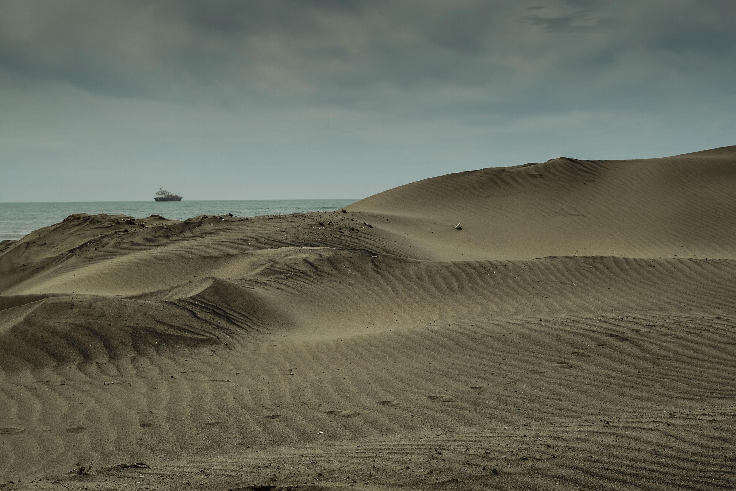 beyond the dunes......