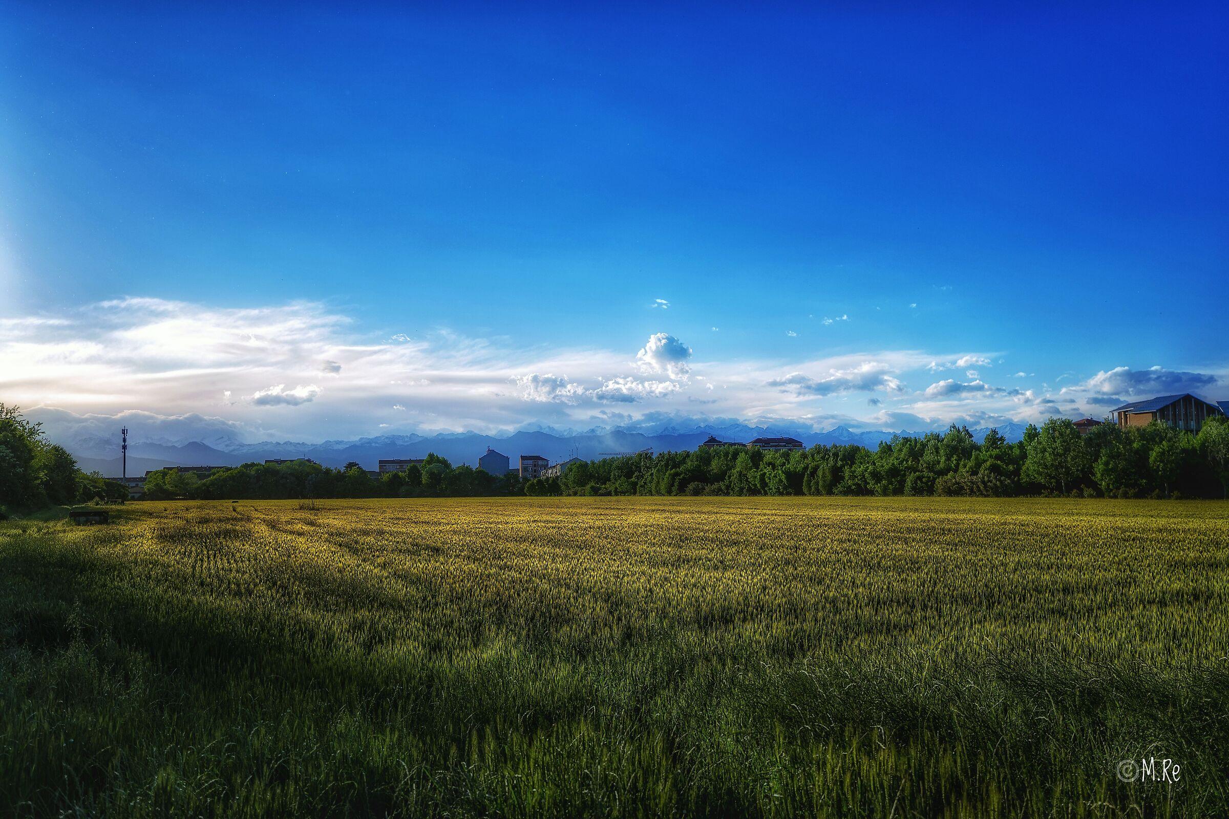 Fields around Settimo Torinese...