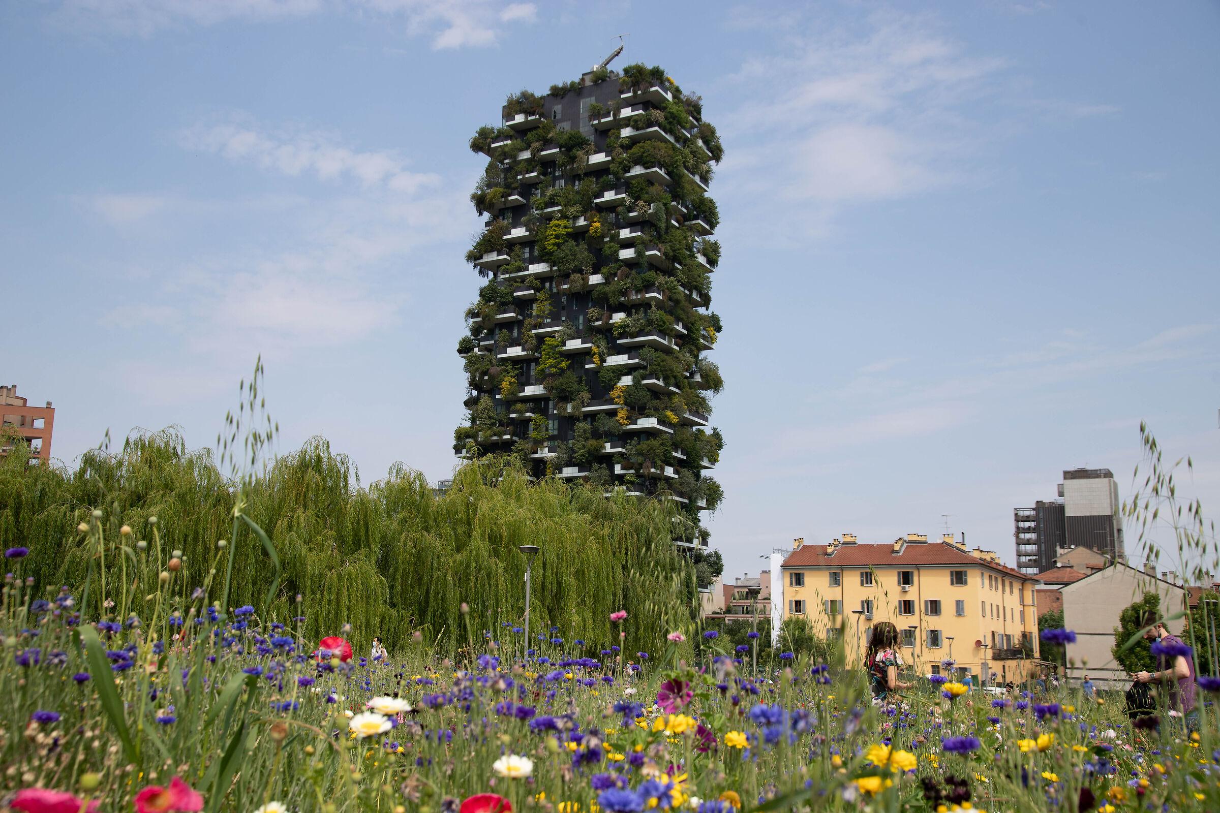 La green architecture del Bosco Verticale...