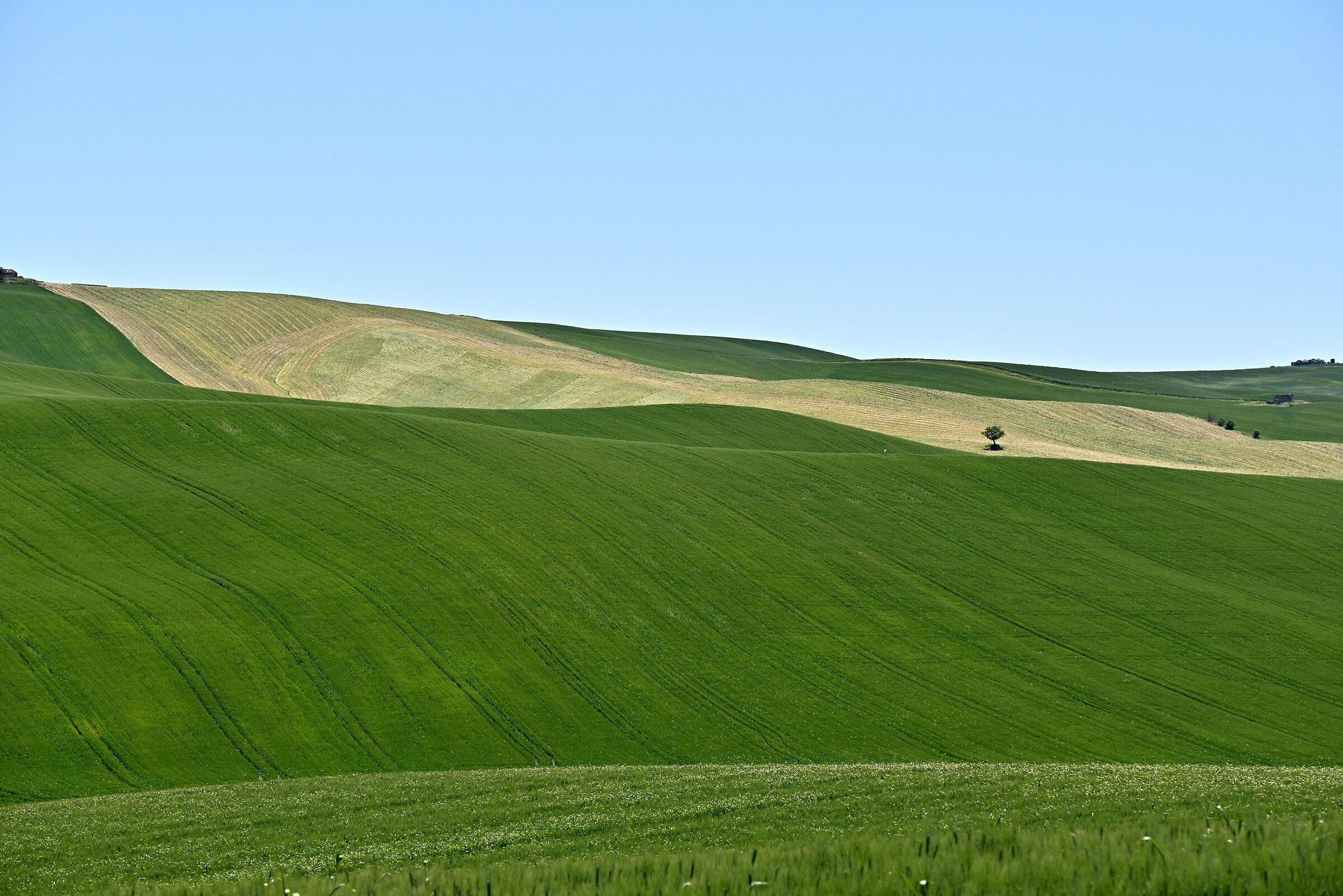 Molise Countryside...