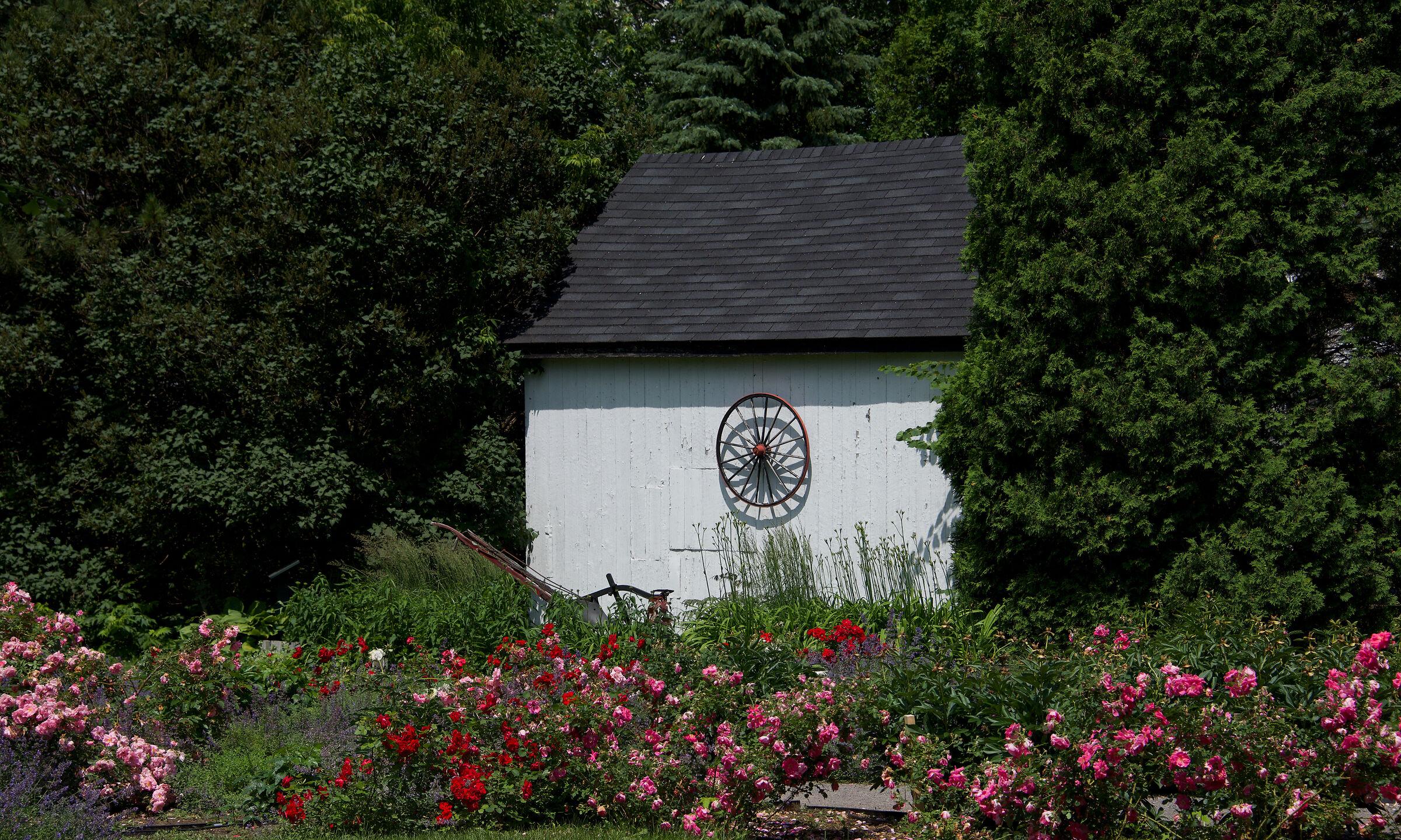 Flowers garden in Deschambault, suburb of Quebec City...