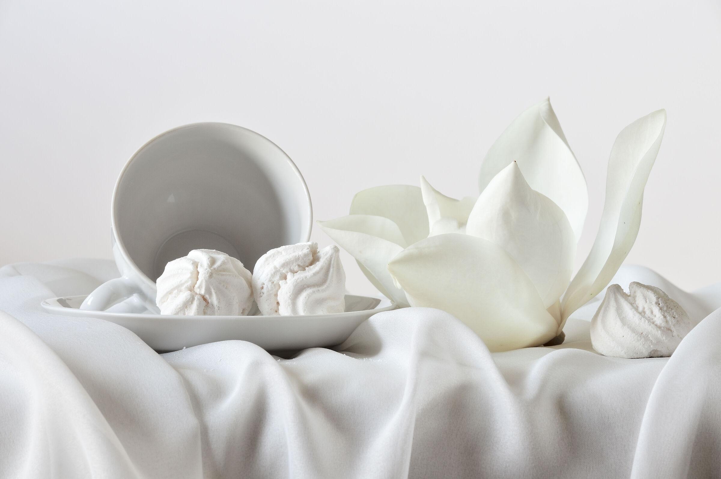 il fiore della magnolia...