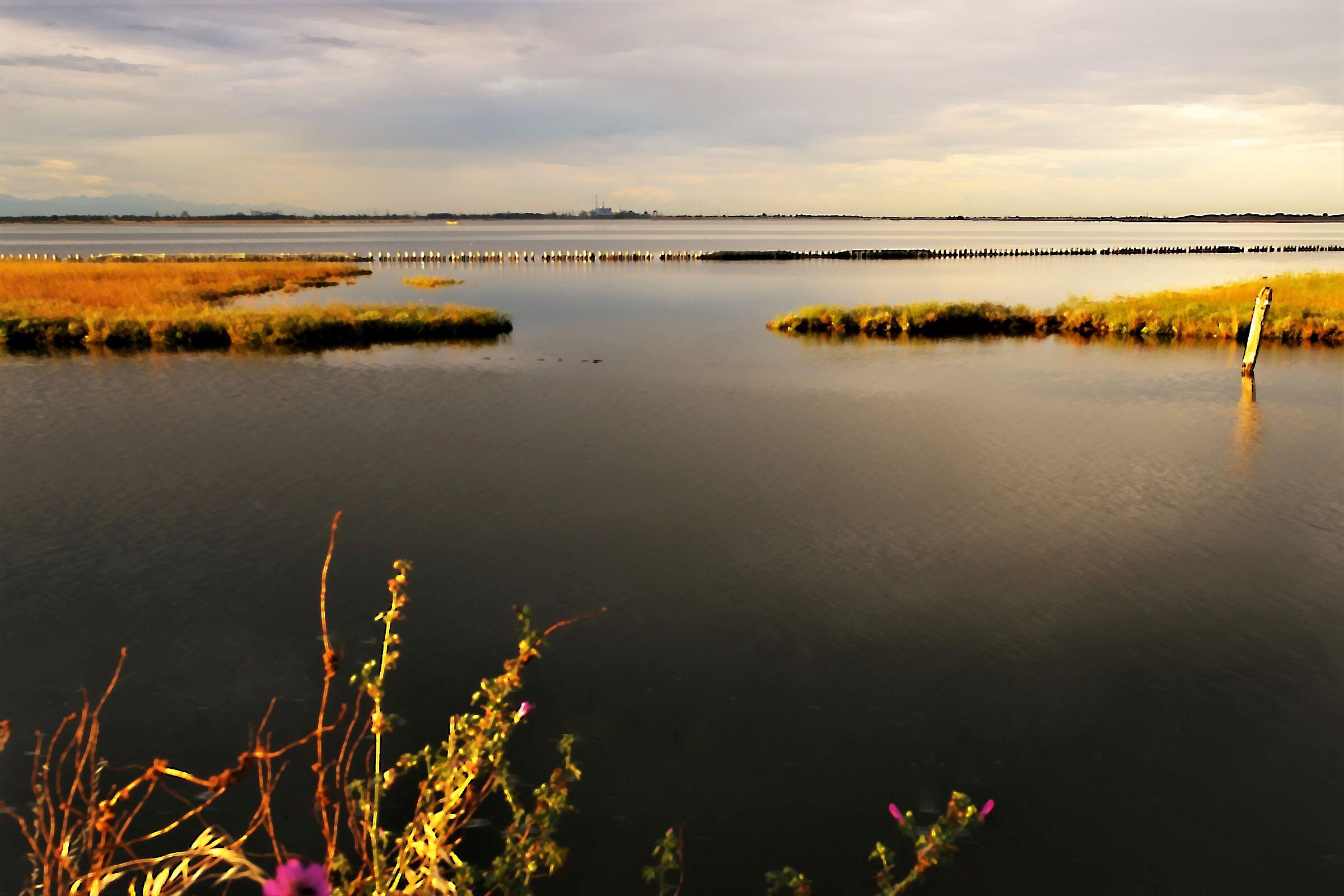 Jars of Mira lagoon south...