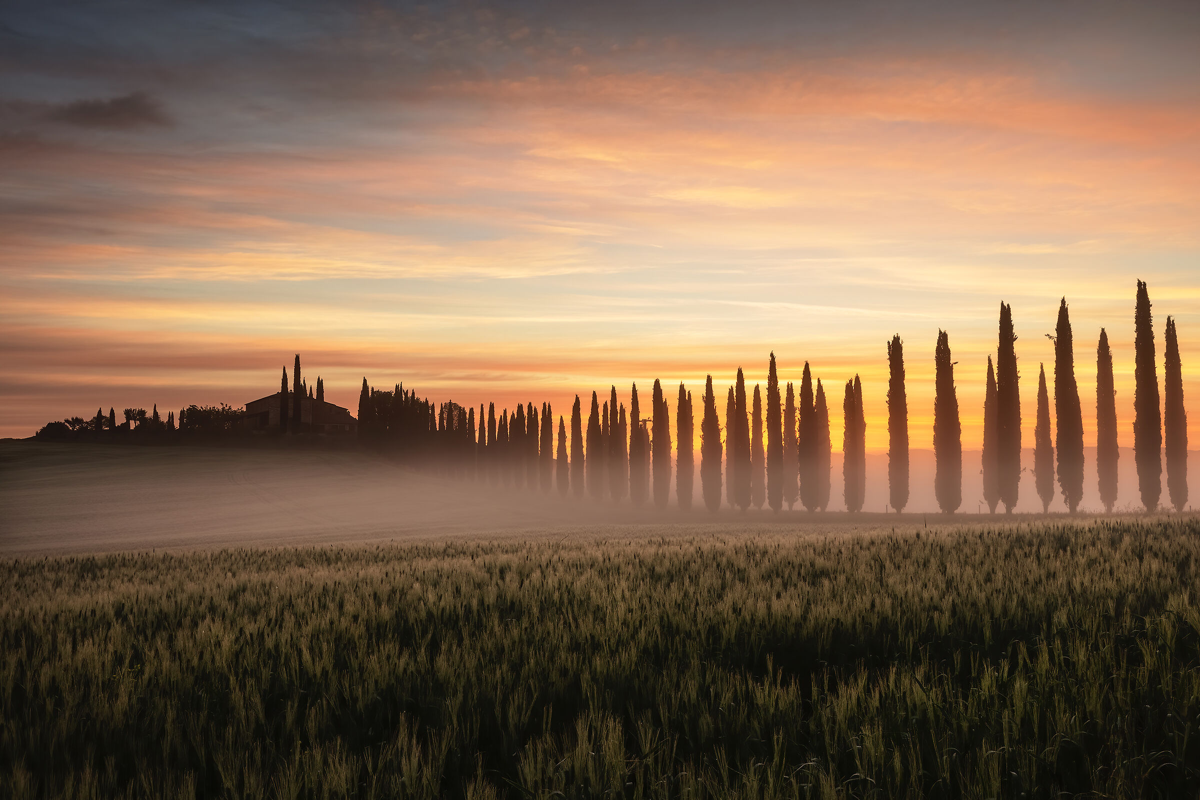 Val d'Orcia mood...