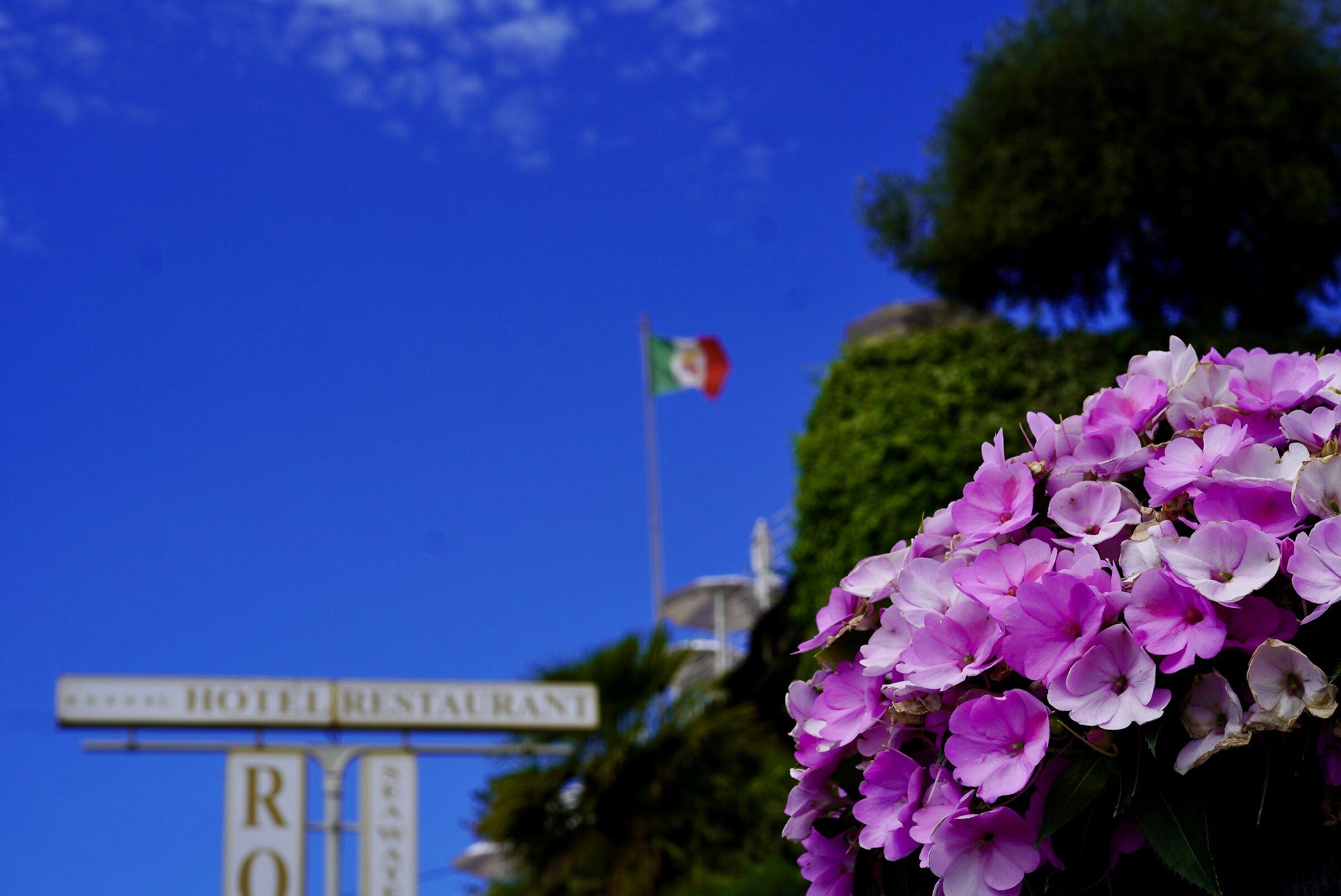Italy!...