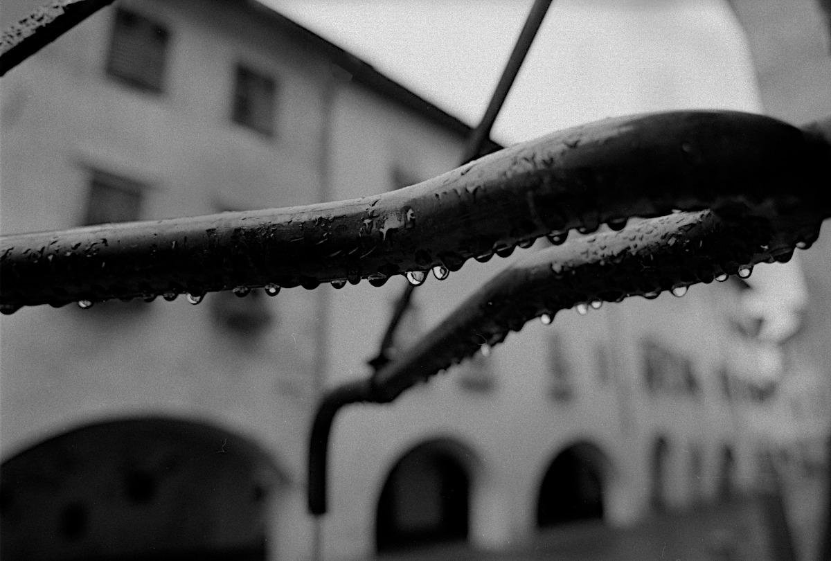 Dopo la pioggia...