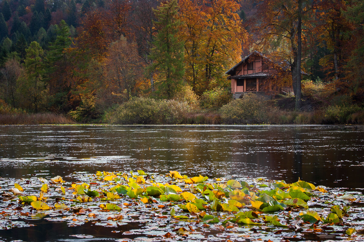 The small lake of fairy tales ......