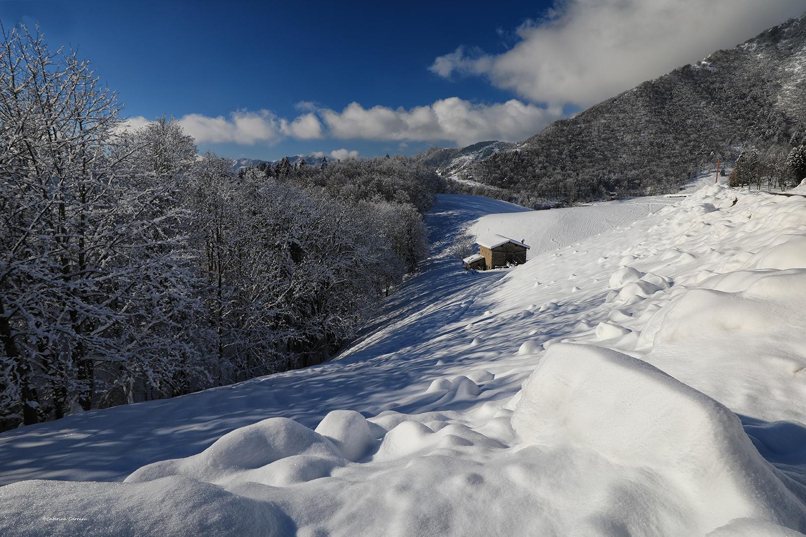 Paesaggio invernale...