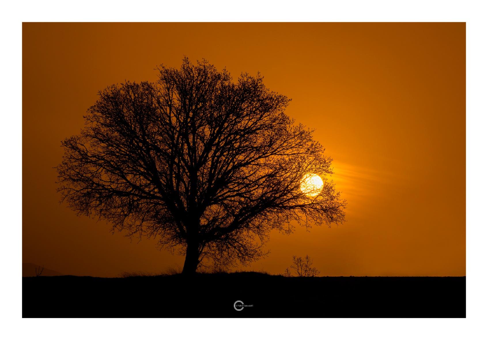 Sun Rise at 6 a.m....