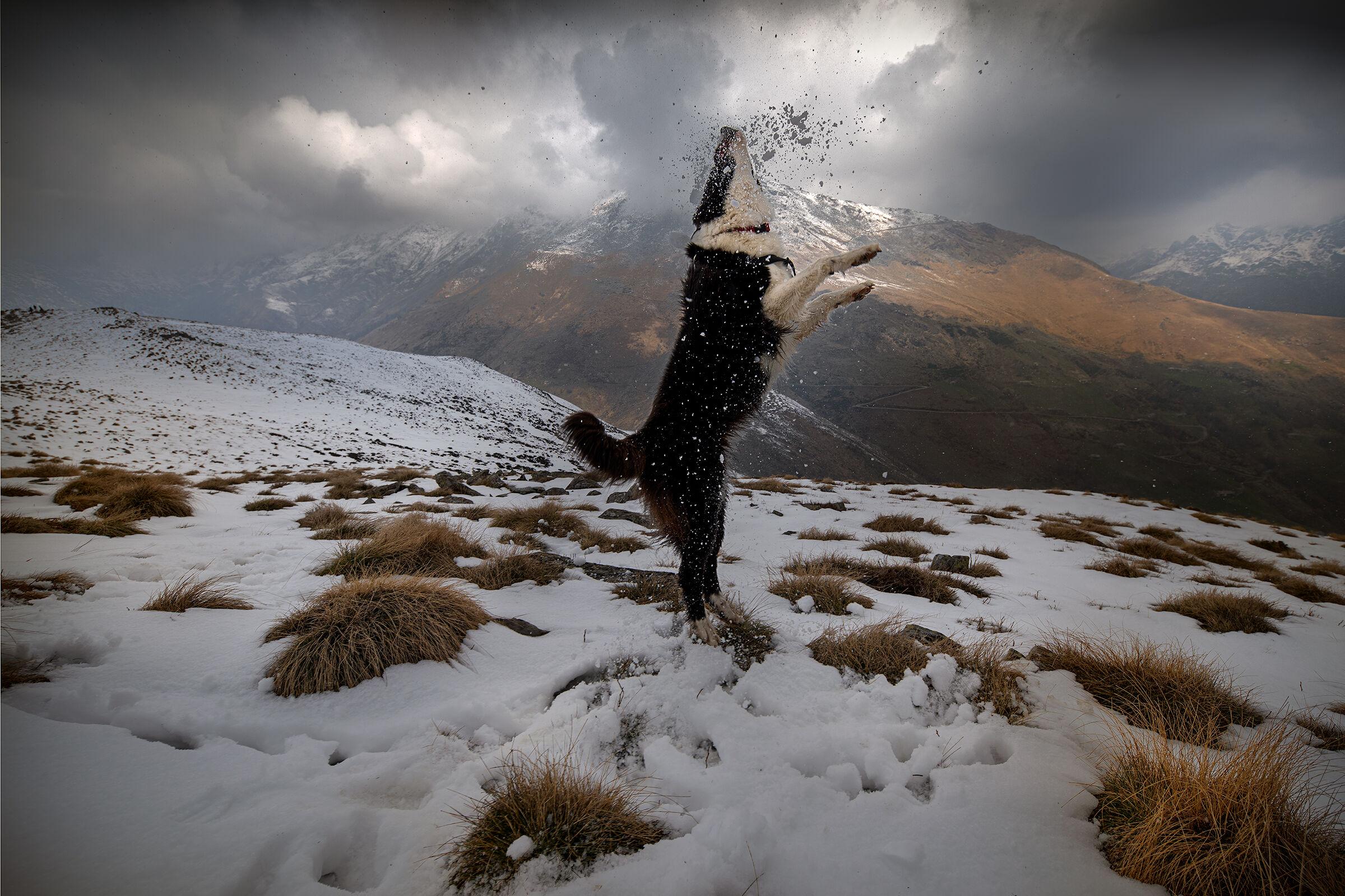 """""""Nuvola"""" tra le nuvole e la neve..."""