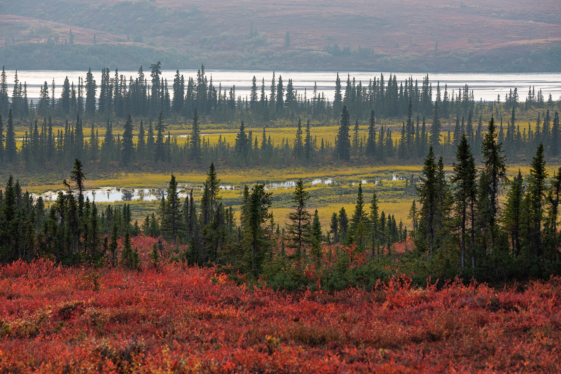 Susitna River, Alaska...