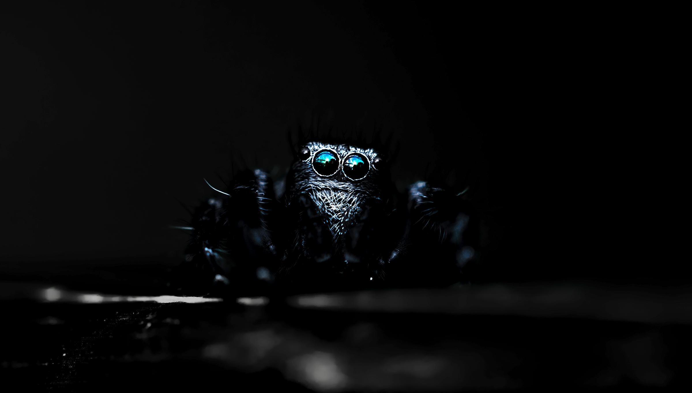 dark eyes...