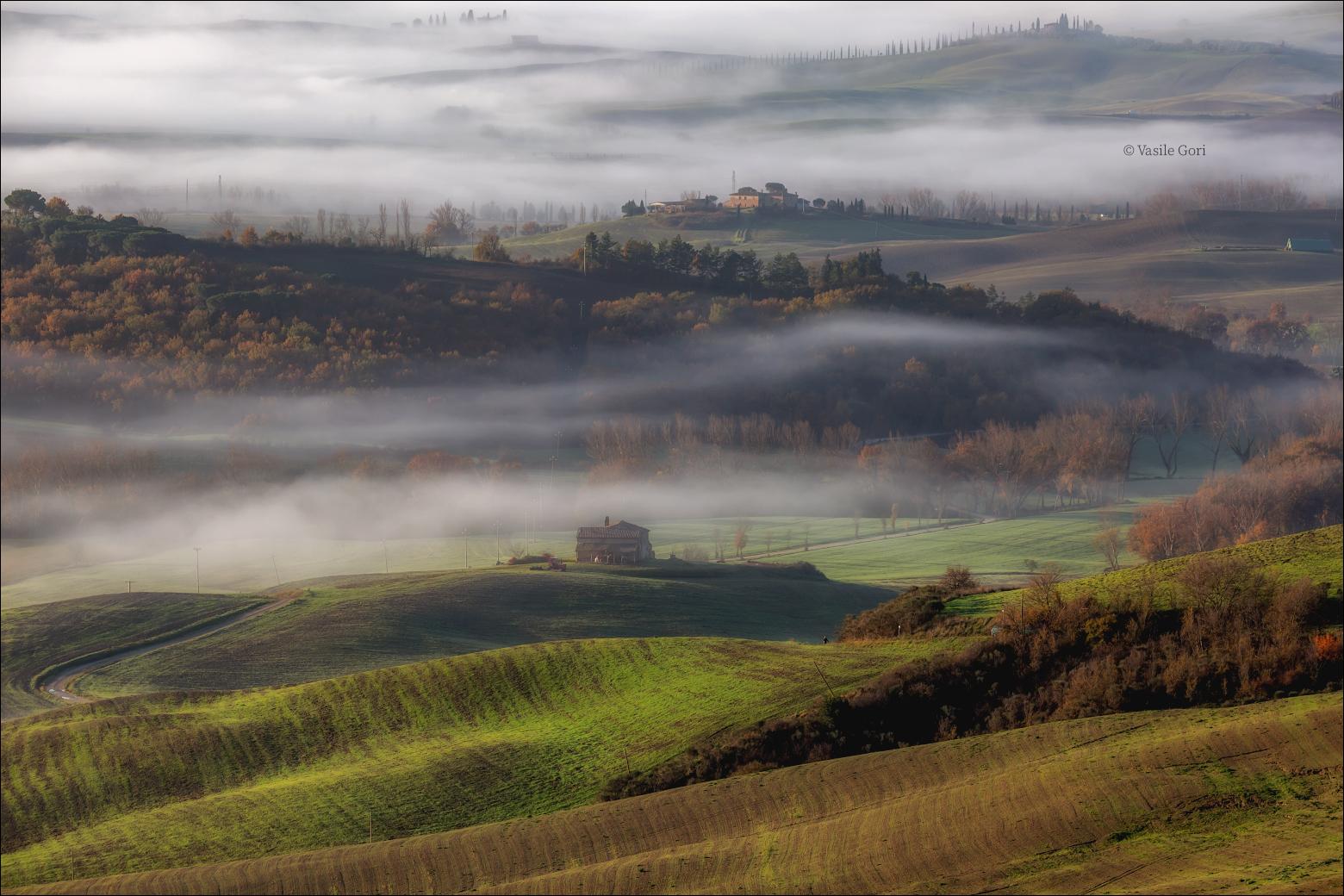 Colline nebbiose della valle di Orcia...