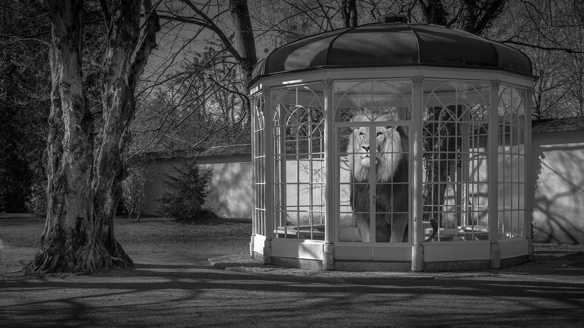 Hellbrunn Sounds of silence...