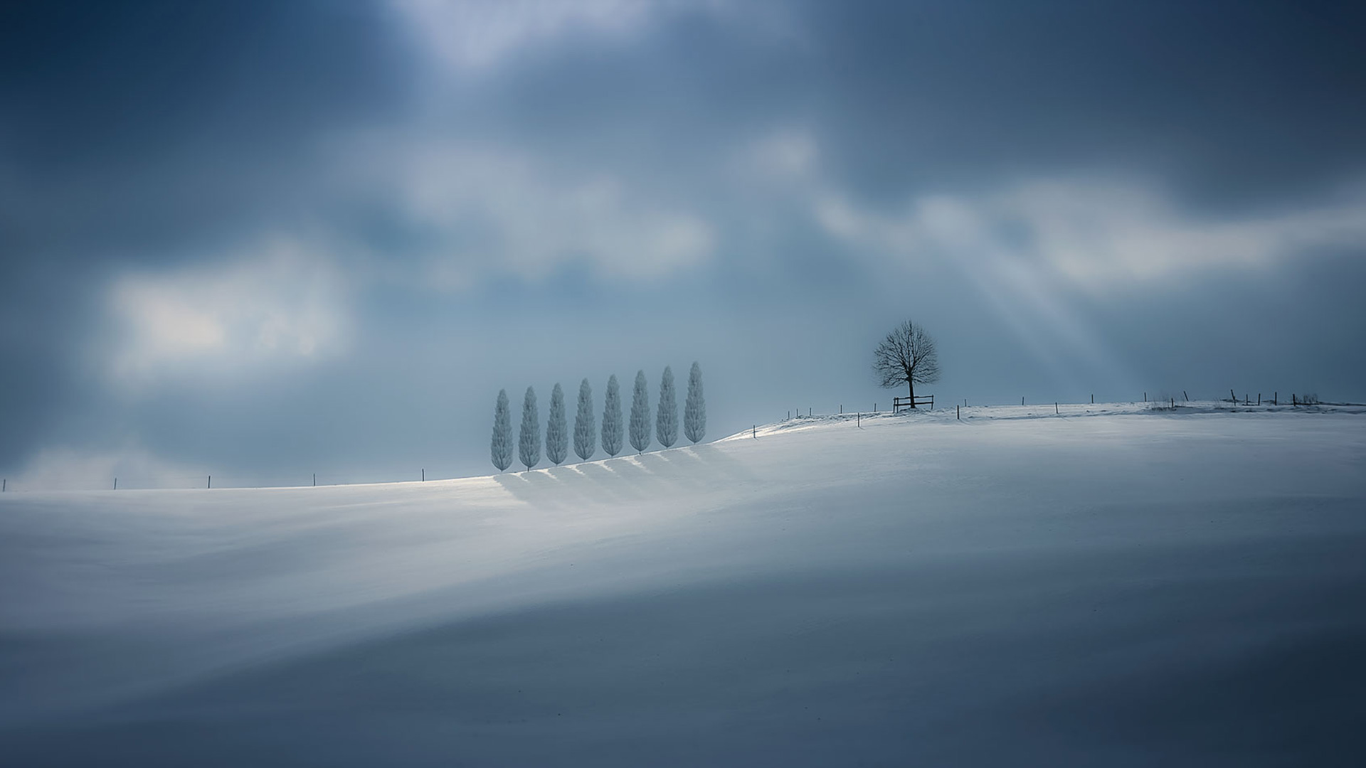 Toskana winter 2014...