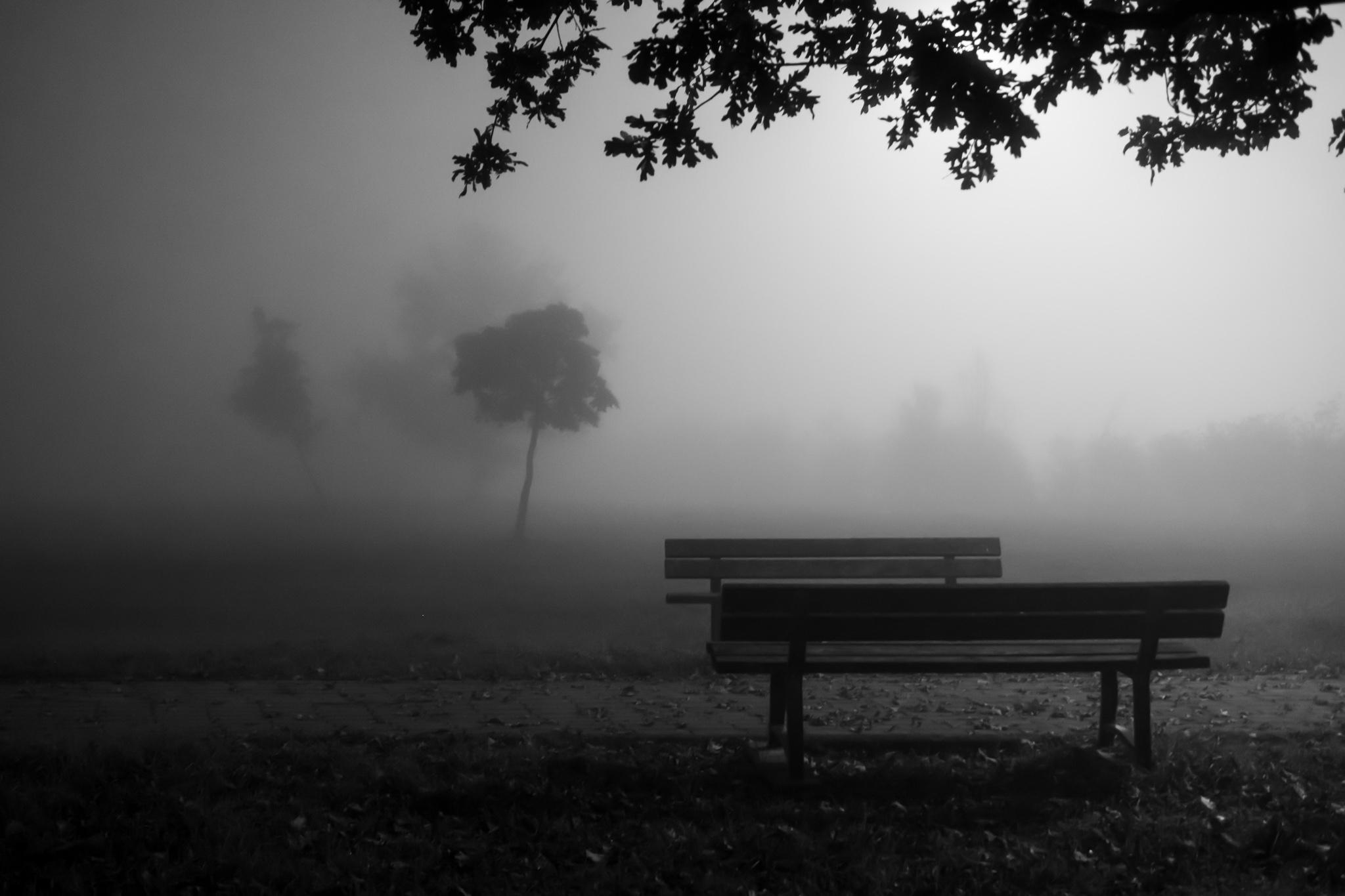 fog is a friend of conspiracies. But Changsan...